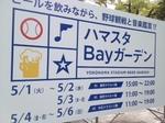 bay.JPG